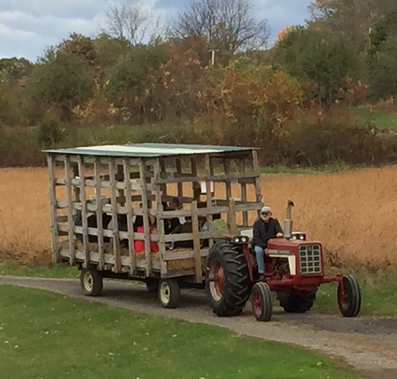 Family Harvest Weekends